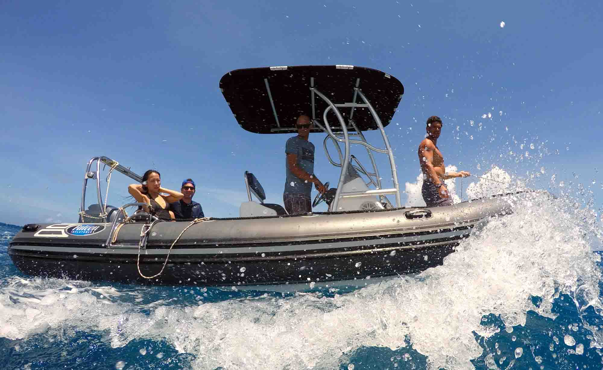 Best private Boat tours Moorea Snorkeling Marine Widlife Whales Sharks Moorea Ocean Adventures