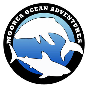 Moorea Ocean Adventures